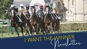 labels.article_img_Performances des chevaux vendus sur I WANT THE WINNER